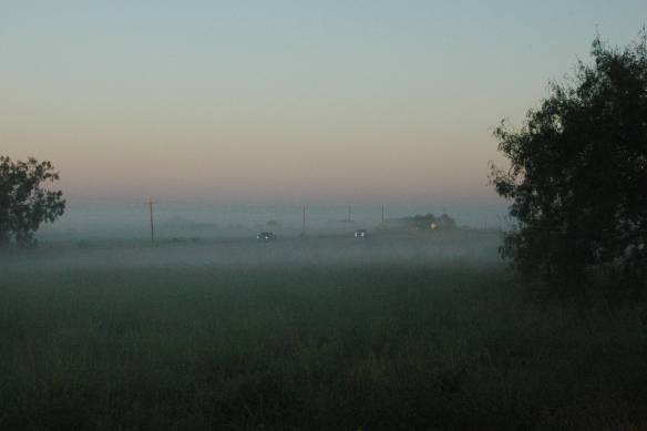 Early October Morning